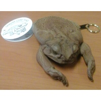 SMALL CANE TOAD COIN PURSE WITH LEGS