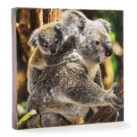 KOALA & BABY CANVAS ART