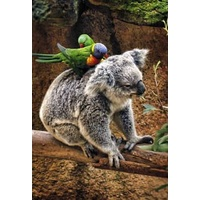 KOALA AND BIRDS GREETING CARD
