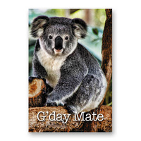 G'DAY KOALA GREETING CARD