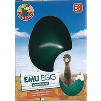 EMU EGG GROWING PET