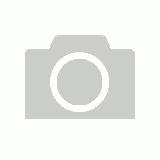 Gday koala greeting card m4hsunfo