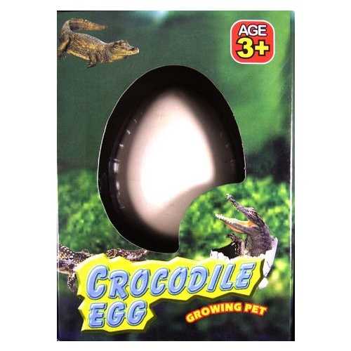 CROCODILE EGG GROWING PET